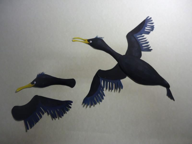 Cormorant-800x600