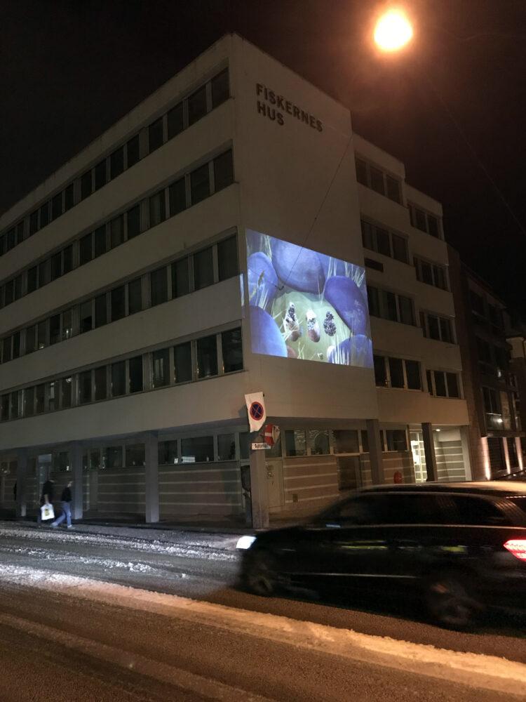 Outside screening at Fiskerens Hus in Ålesund!